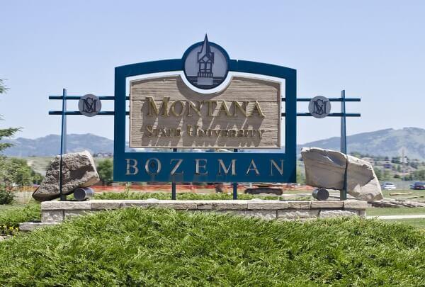 Montana State University Road Rage